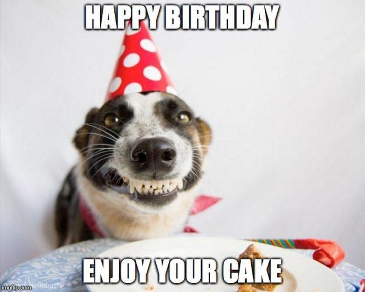 """71 Happy Birthday Brother Memes - """"Happy birthday. Enjoy your cake."""""""