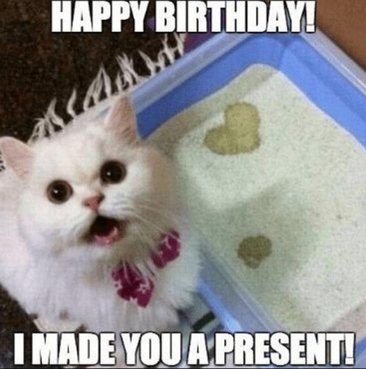 "71 Happy Birthday Brother Memes - ""Happy birthday! I made you a present!"""