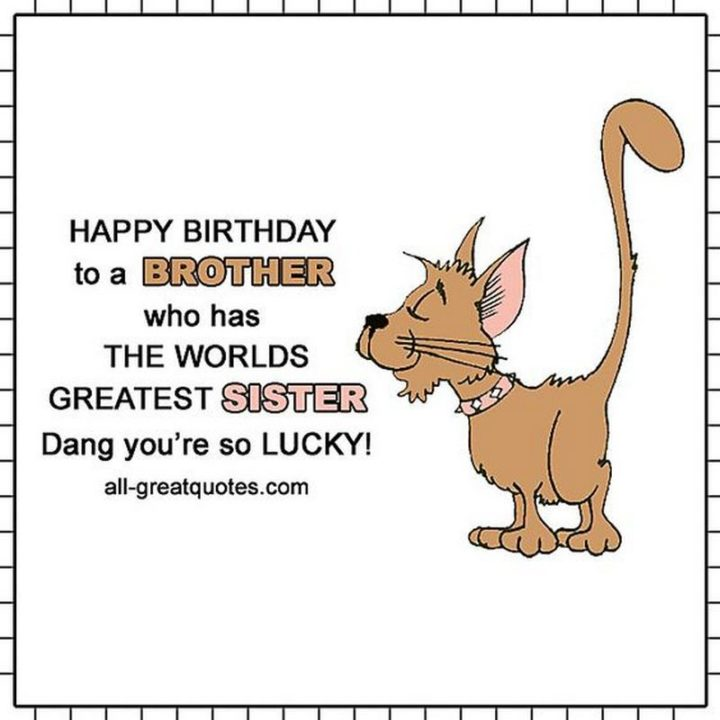 """71 Happy Birthday Brother Memes - """"Happy birthday to a brother who has the world's greatest sister. Dang, you're so lucky!"""""""