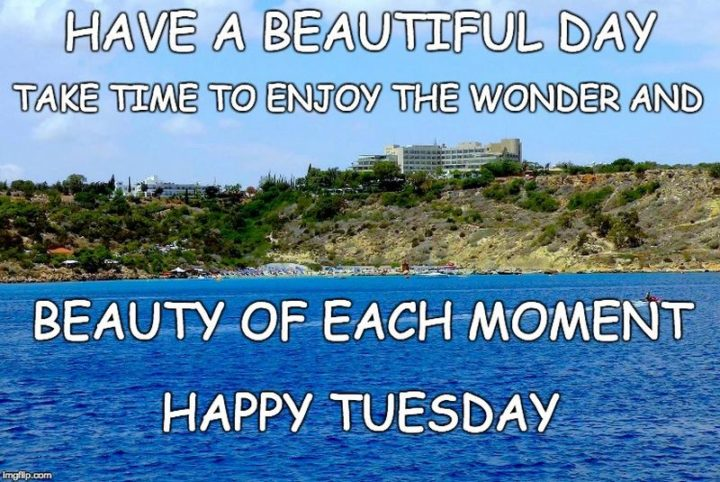 """55 Tuesday Quotes - """"Have a beautiful day! Take time to enjoy the wonder and beauty of each moment. Happy Tuesday!"""" - Unknown"""