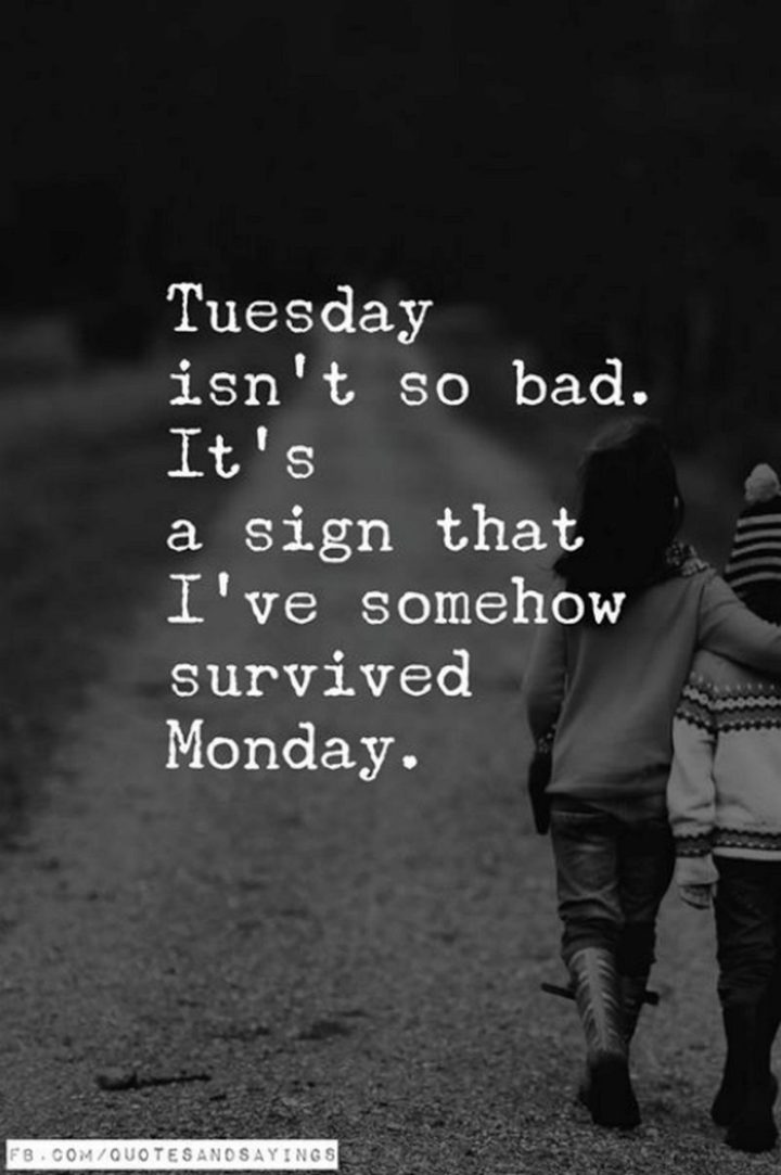 """55 Tuesday Quotes - """"Tuesday isn't so bad...It's a sign that I've somehow survived Monday."""" - Unknown"""