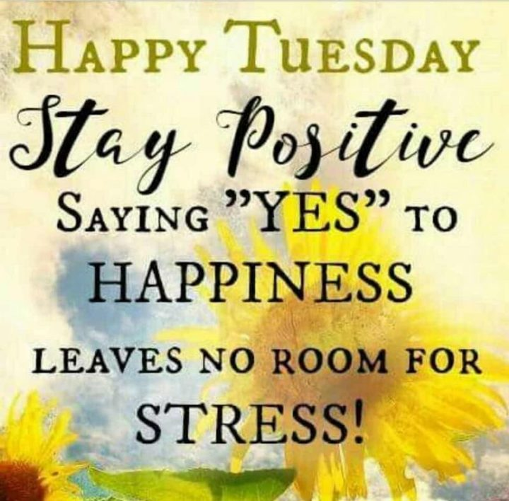 """55 Tuesday Quotes - """"Happy Tuesday. Stay positive. Saying 'YES' to HAPPINESS leaves no room for STRESS!"""" - Unknown"""