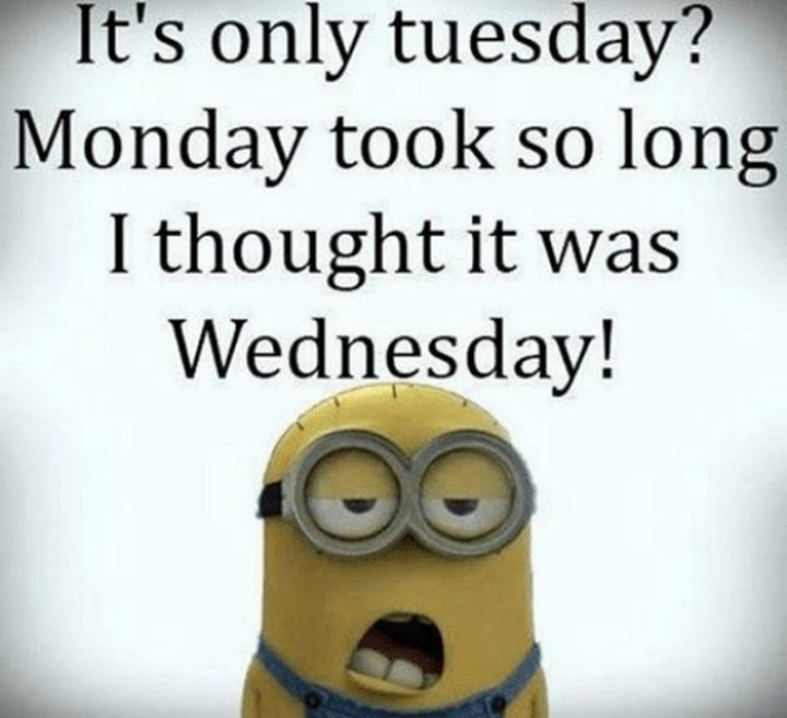 """55 Tuesday Quotes - """"It's only Tuesday? Monday took so long that I thought it was Wednesday."""" - Unknown"""