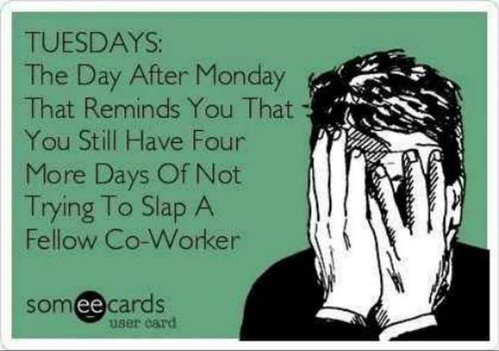 """55 Tuesday Quotes - """"Tuesday: The day after Monday that reminds you that you still have four more days of not trying to slap a fellow co-worker."""" - Unknown"""