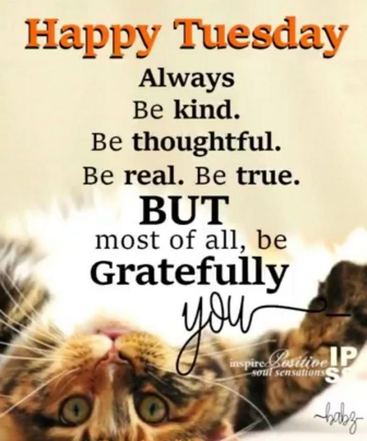 """55 Tuesday Quotes - """"Happy Tuesday. Always be kind. Be thoughtful. Be real. Be true. But most of all, be gratefully you."""" - Unknown"""