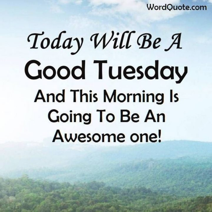 """55 Tuesday Quotes - """"Today will be a good Tuesday and this morning is going to be an awesome one!"""" - Unknown"""