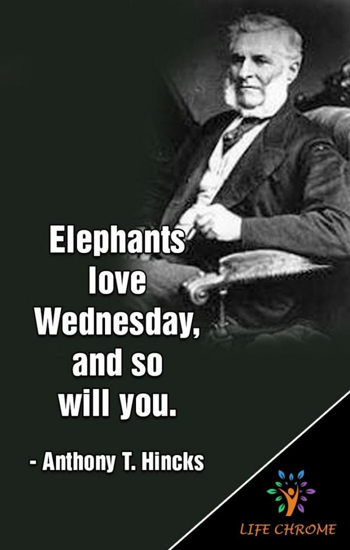 "65 Happy Wednesday Quotes - ""Elephants love Wednesday, and so will you."" - Anthony T. Hincks"