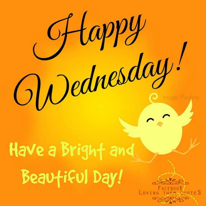 "65 Happy Wednesday Quotes - ""Happy Wednesday! Have a bright and beautiful day!"" - Unknown"