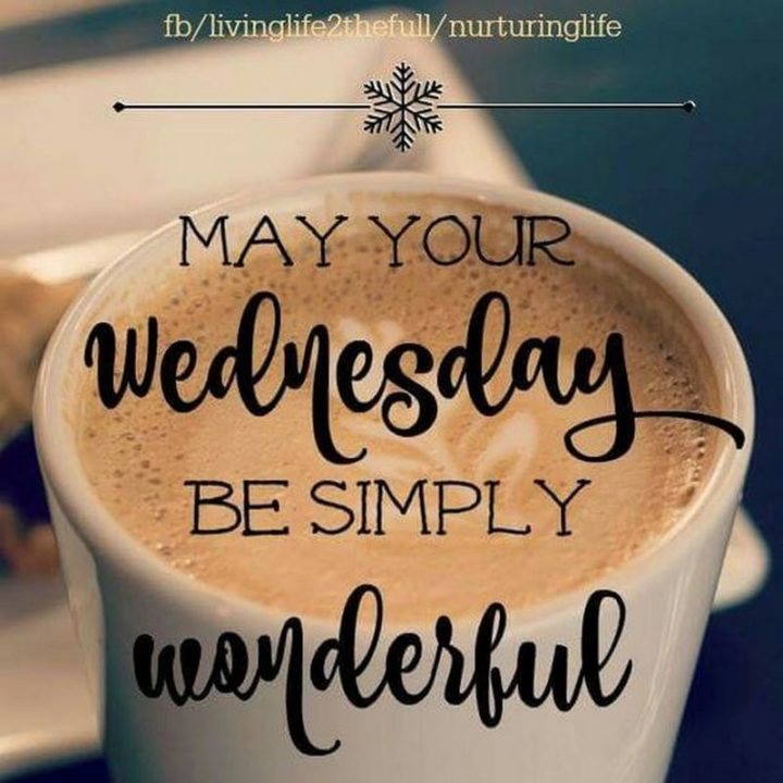 65 Happy Wednesday Quotes and Images to Celebrate Hump Day
