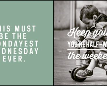 65 Happy Wednesday Quotes for Making It Through Hump Day.