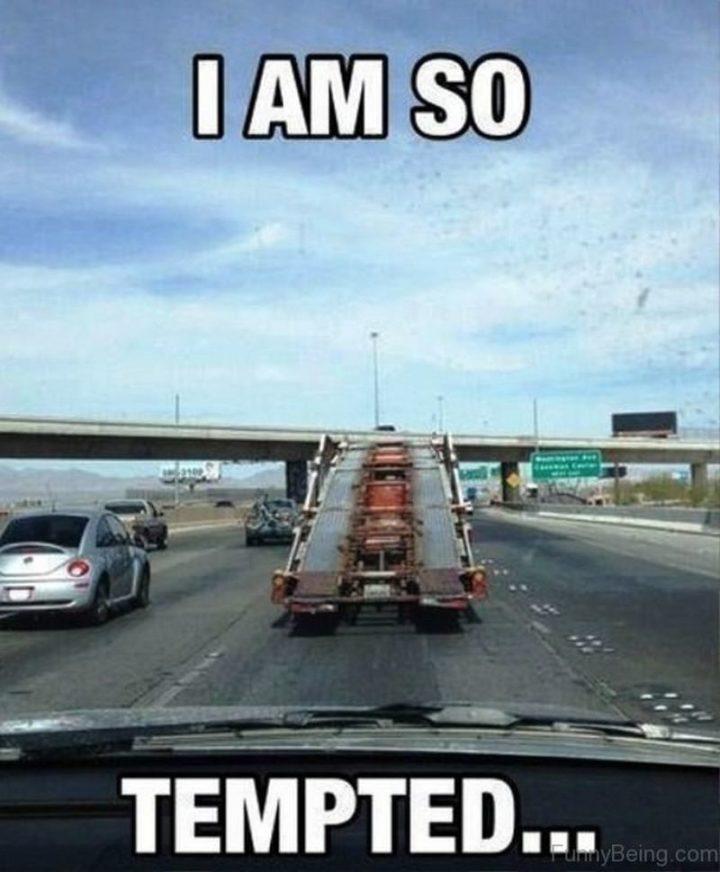 "85 Funny Car Memes - ""I am so tempted..."""