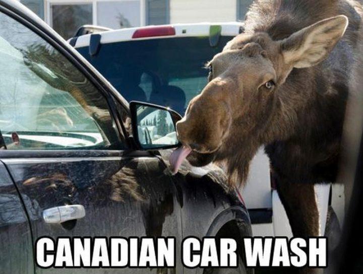 """""""Canadian car wash."""""""