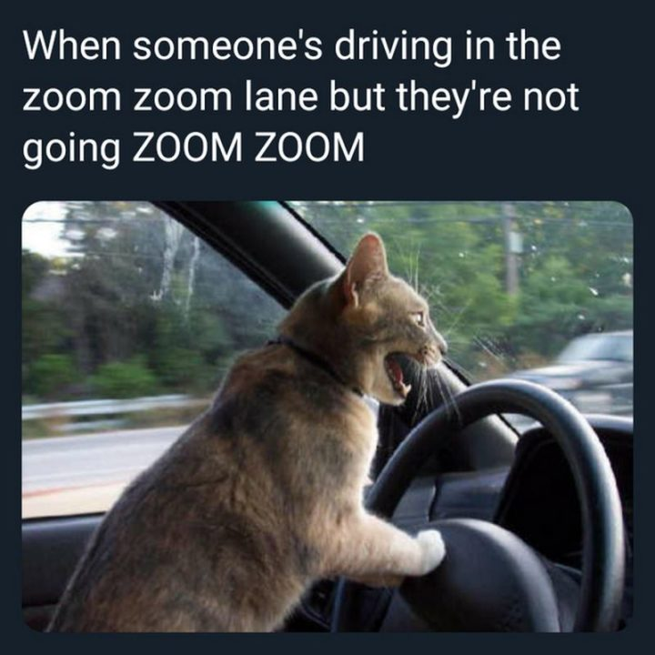 """""""When someone's driving in the zoom zoom lane but they're not going ZOOM ZOOM."""""""