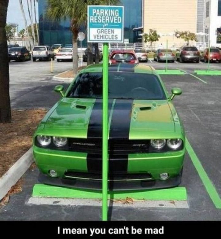 """""""Parking reserved for green vehicles. I mean you can't be mad."""""""