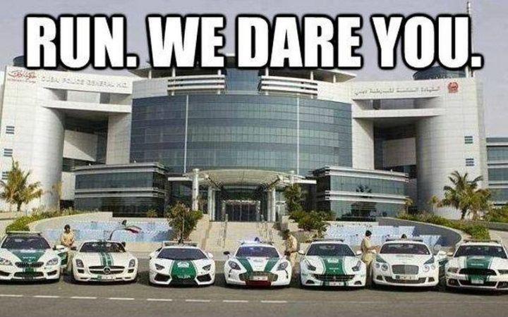 "85 Car Memes - ""Run. We dare you."""