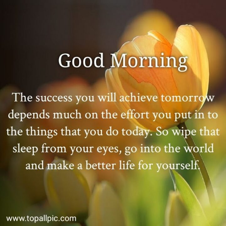 """75 Good Morning Quotes - """"Good morning. The success you will achieve tomorrow depends much on the effort you put into the things that you do today. So wipe that sleep from your eyes, go into the world and make a better life for yourself."""" - Anonymous"""