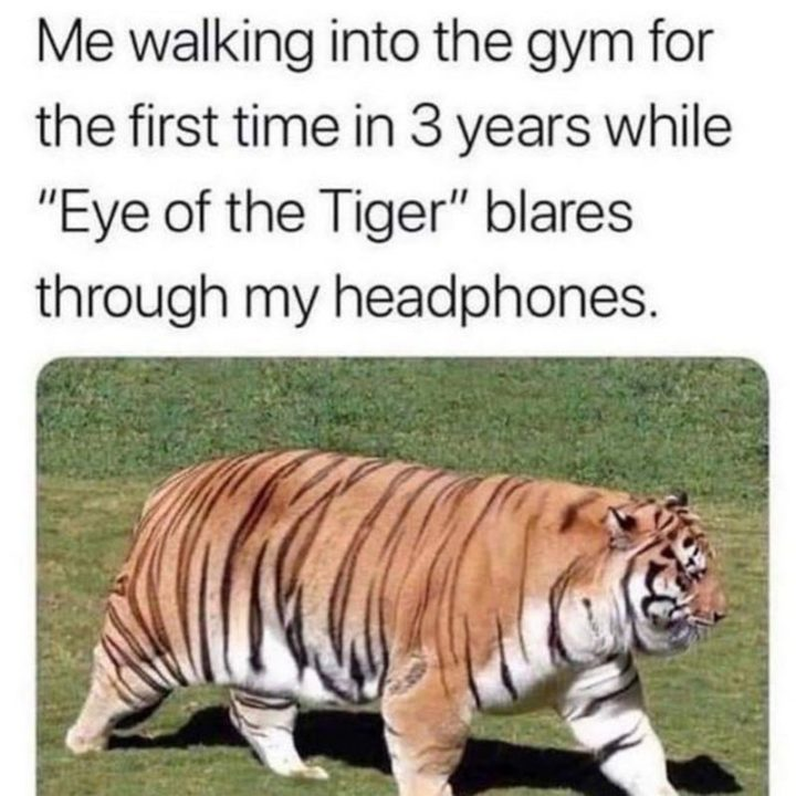"""65 Gym Memes - """"Me walking into the gym for the first time in 3 years while 'Eye of the Tiger' blares through my headphones."""""""