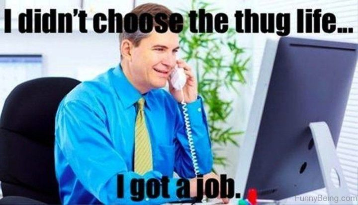 """I didn't choose the thug life...I got a job."""