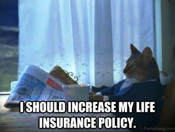 """""""I should increase my life insurance policy."""""""