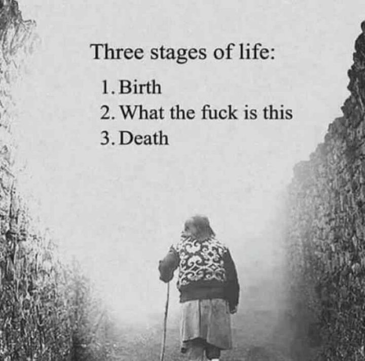 """""""Three stages of life: 1) Birth. 2) What the [censored] is this. 3) Death."""""""
