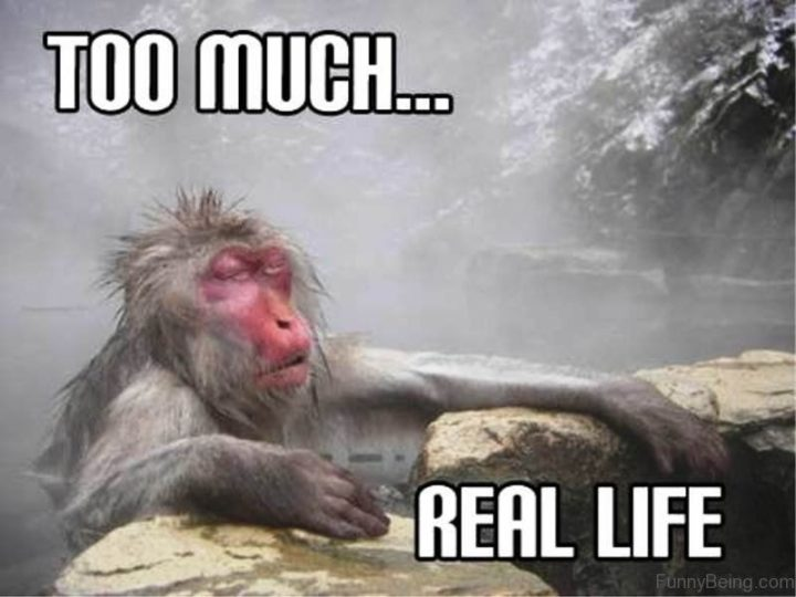 """""""Too much...Real life."""""""