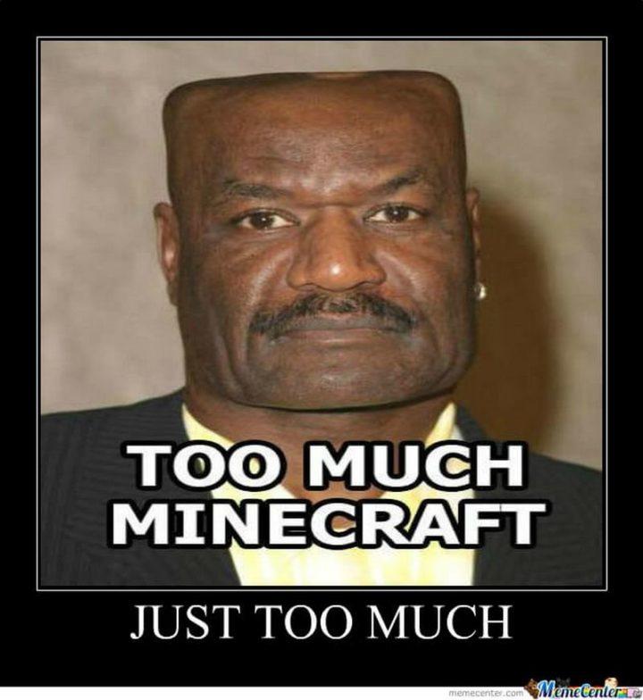 """85 Minecraft Memes - """"Too much Minecraft. Just too much."""""""