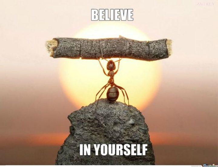 "67 Motivational Memes - ""Believe in yourself."""