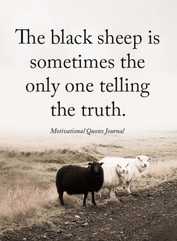 """67 Motivational Memes - """"The black sheep is sometimes the only one telling the truth."""""""