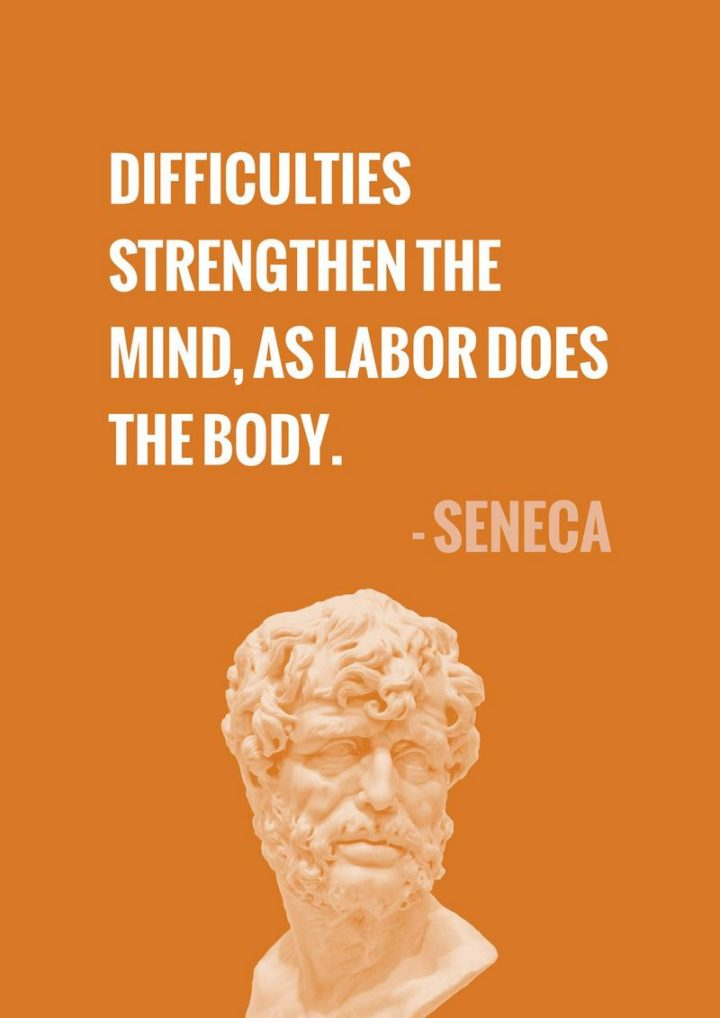 """67 Motivational Memes - """"Difficulties strengthen the mind, as labor does the body."""" - Seneca"""