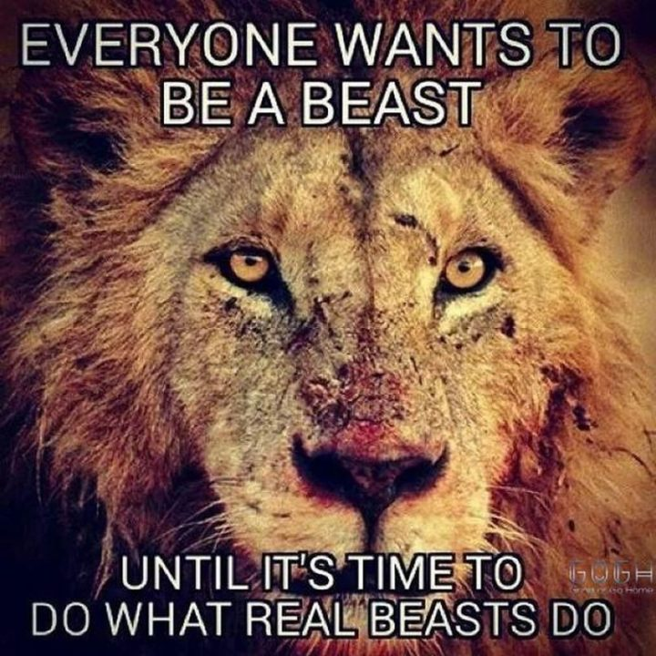"""67 Motivational Memes - """"Everyone wants to be a beast until it's time to do what real beasts do."""""""