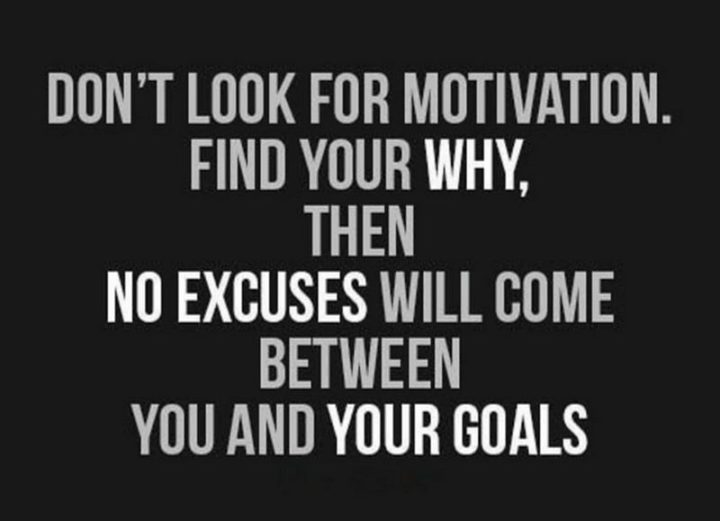 """67 Motivational Memes - """"Don't look for motivation. Find your why, then no excuses will come between you and your goals."""""""
