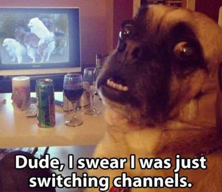 "71 Funny Dirty Memes - ""Dude, I swear I was just switching channels."""