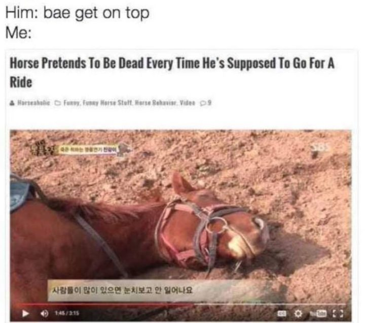 "71 Funny Dirty Memes - ""Him: Bae, get on top. Me: Horse pretends to be dead every time he's supposed to go for a ride."""