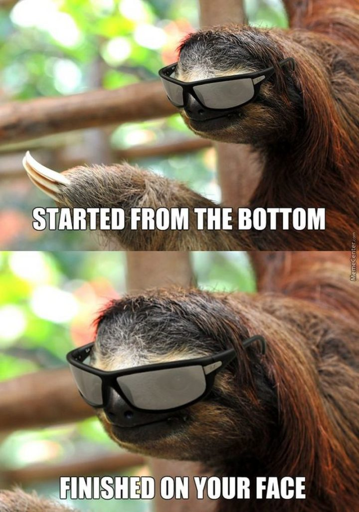 "71 Funny Dirty Memes - ""Started from the bottom. Finished on your face."""
