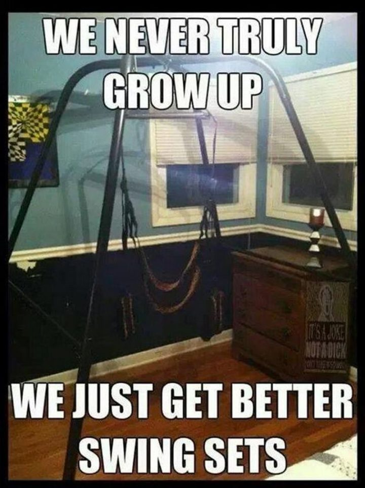 "71 Funny Dirty Memes - ""We never truly grow up. We just get better swing sets."""