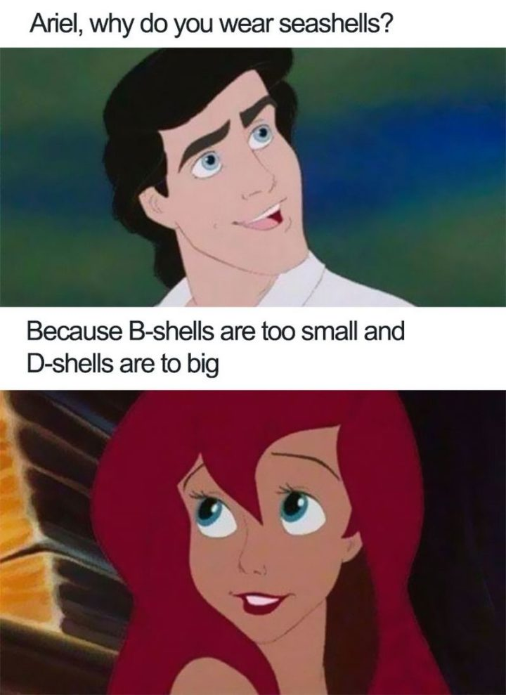 "51 Funny Disney Memes - ""Ariel, why do you wear seashells? Because B-shells are too small and D-shells are too big."""