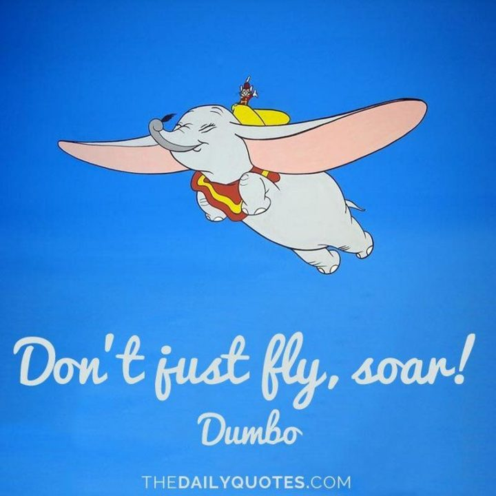 "61 Inspirational Disney Quotes - ""Don't just fly, soar."" - Dumbo"