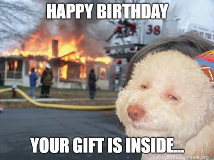 "101 Happy Birthday Dog Memes - ""Happy birthday. Your gift is inside..."""