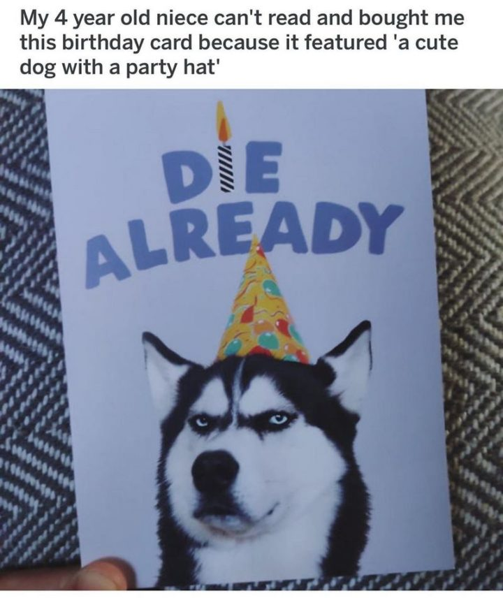 "101 Happy Birthday Dog Memes - ""My 4 year old niece can't read and bought me this birthday card because it featured 'a cute dog with a party hat'."""