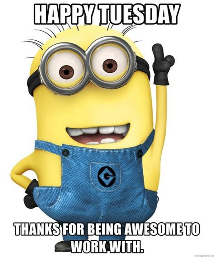 "101 Tuesday Memes - ""Happy Tuesday. Thanks for being awesome to work with."""