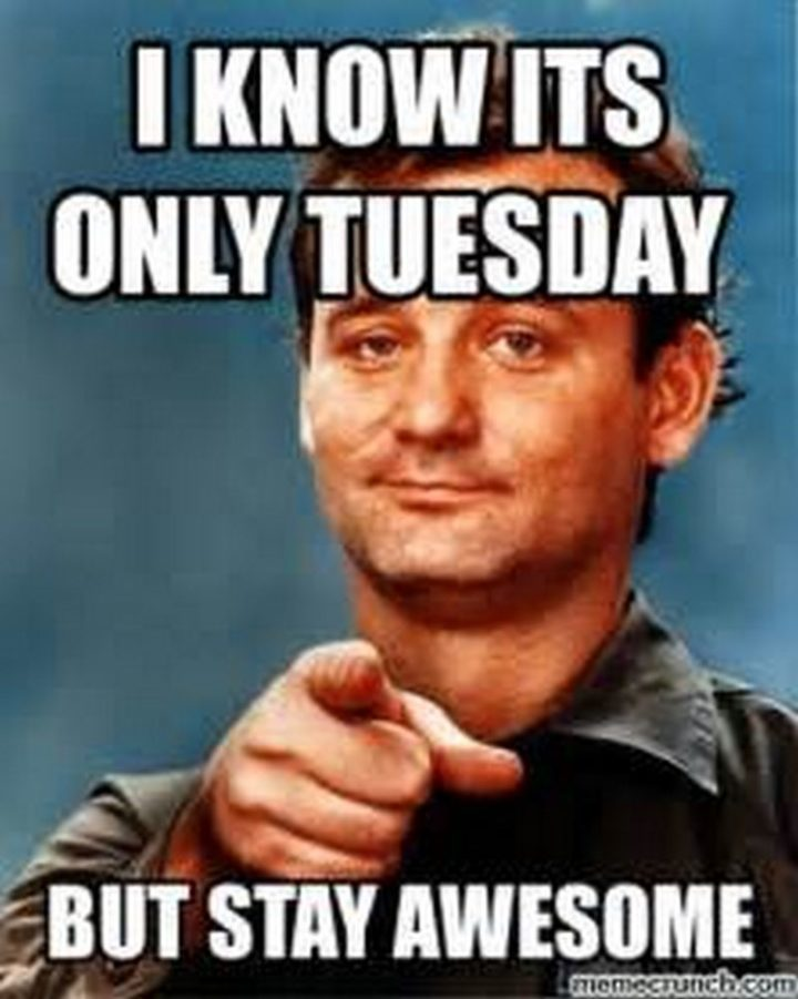 "101 Tuesday Memes - ""I know it's only Tuesday but stay awesome."""
