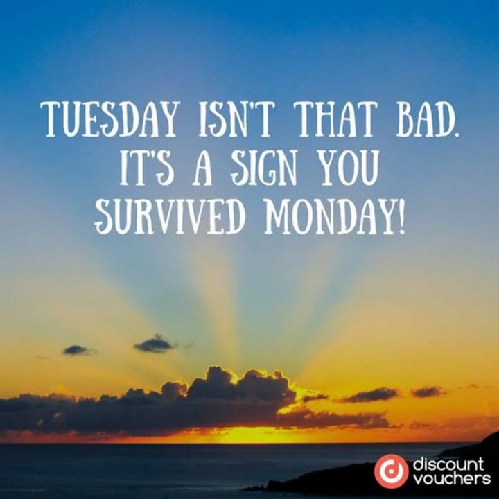 "101 Tuesday Memes - ""Tuesday isn't that bad. It's a sign you survived Monday!"""