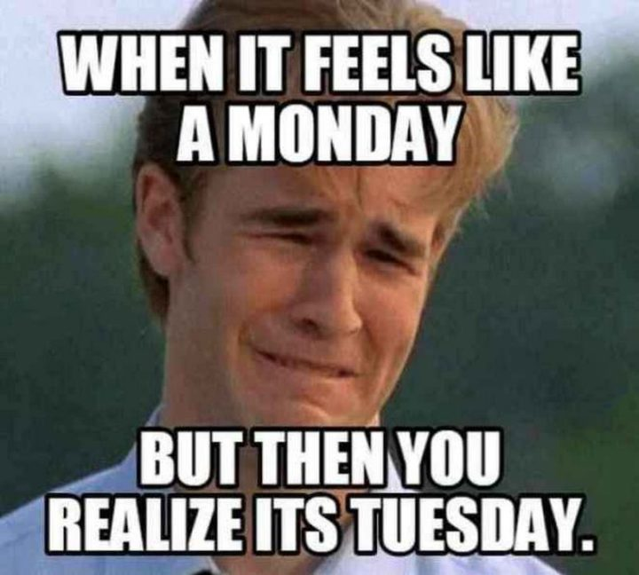 "101 Tuesday Memes - ""When it feels like a Monday but then you realize it's Tuesday."""
