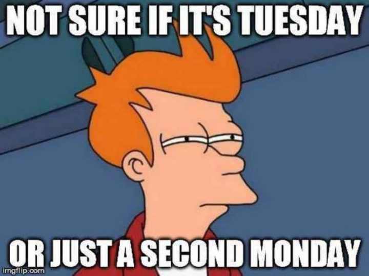 "101 Tuesday Memes - ""Not sure if it's Tuesday or just a second Monday."""