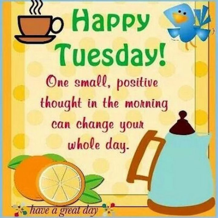 "101 Tuesday Memes - ""Happy Tuesday! One small, positive thought in the morning can change your whole day. Have a great day!"""
