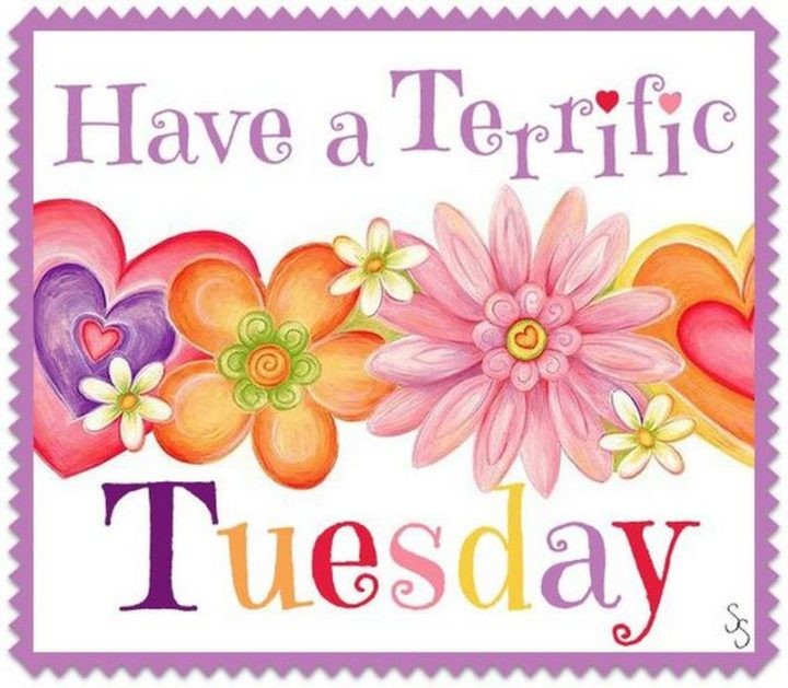"101 Tuesday Memes - ""Have a terrific Tuesday."""