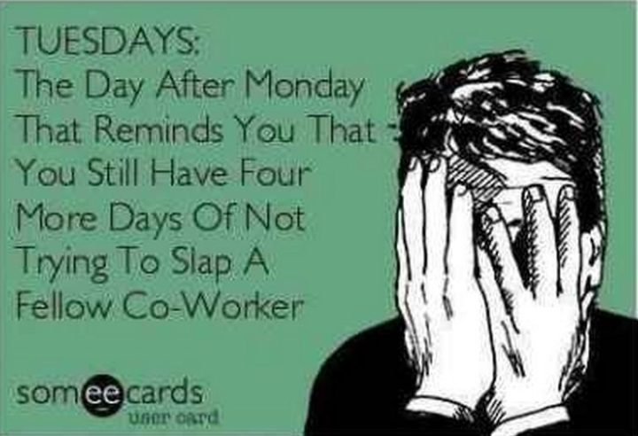 "101 Tuesday Memes - ""TUESDAYS: The day after Monday that reminds you that you still have four more days of not trying to slap a fellow co-worker."""