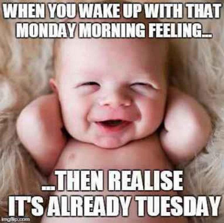 "101 Tuesday Memes - ""When you wake up with that Monday morning feeling...Then realize it's already Tuesday."""