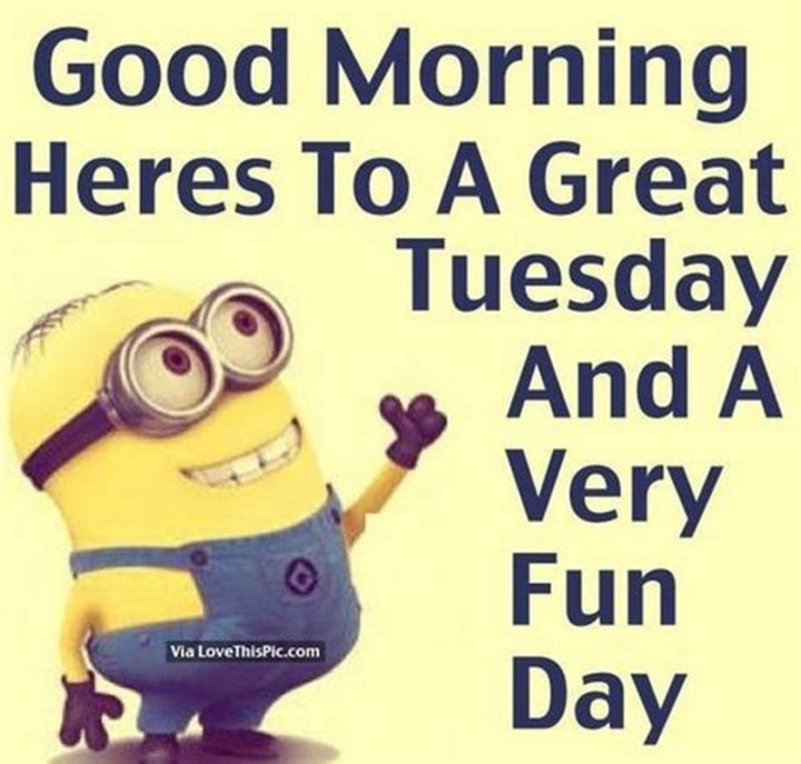 "101 Tuesday Memes - ""Good morning. Heres to a great Tuesday and a very fun day."""