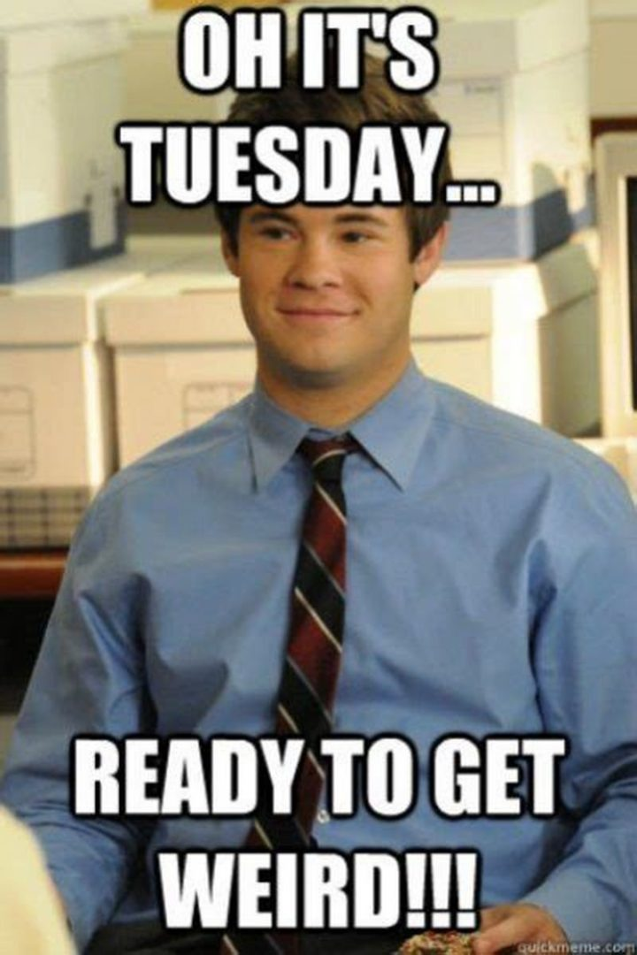 "101 Tuesday Memes - ""Oh, it's Tuesday...Ready to get weird!!!"""